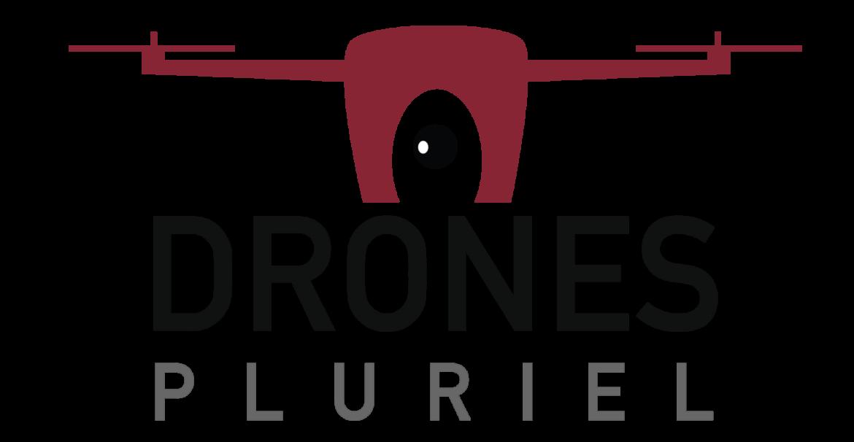 Images de l'entreprise DRONES PLURIEL à ESCOUSSENS